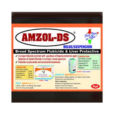 AMZOL DS