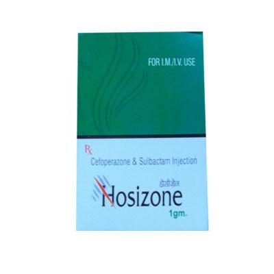 Hosizone