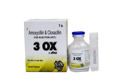 amoxicillin & cloxacillin