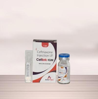 Cefitek-1GM